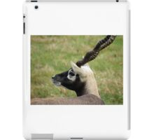 Black Buck iPad Case/Skin