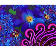 Blue Rainbow Garden Photographic Print