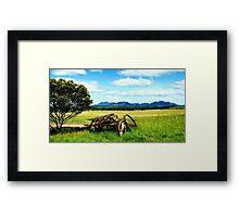Splender in the Grass Framed Print