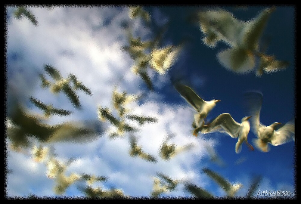 Seagulls by AbbieJebson
