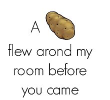A Potato Flew Around by ollysdirection