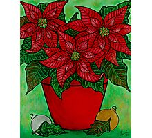 Poinsettia Season Photographic Print