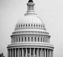 Capitol by Brendan Howard