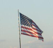 American Flag by dloop20