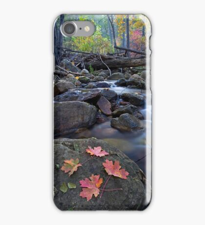 Autumn Along the Creek iPhone Case/Skin