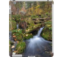 Autumn at the Springs iPad Case/Skin