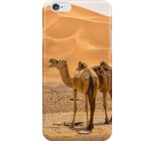 Wild Camels iPhone Case/Skin