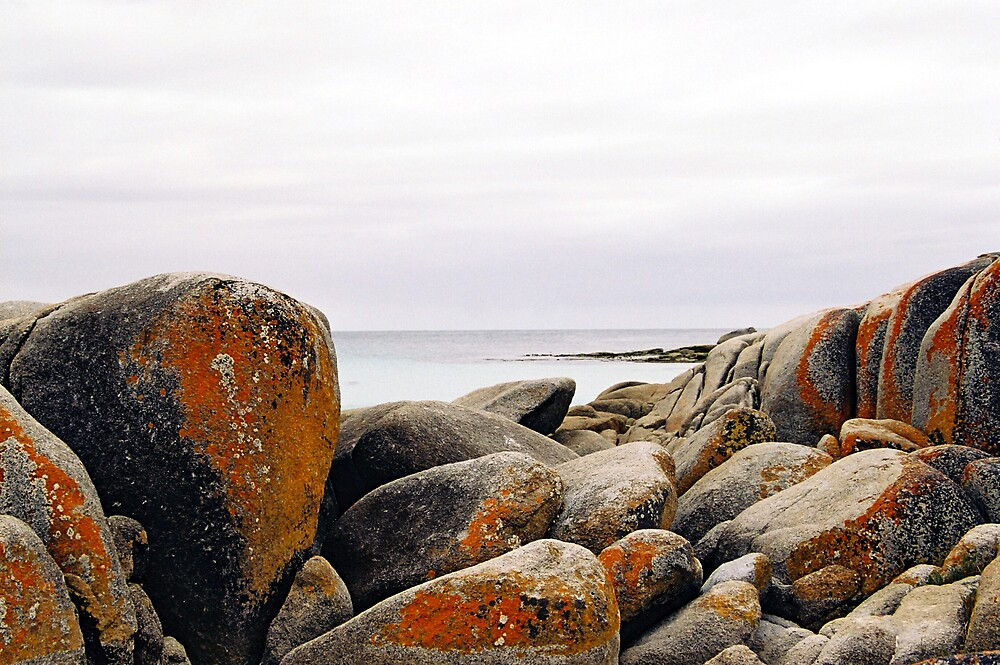 Bay of Fires, Tasmania by bethgardner
