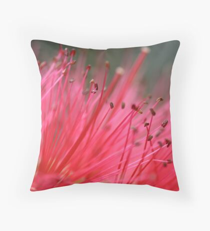 Plush Pink Throw Pillow