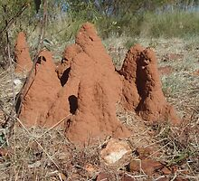Tennant Creek, NT, Australia - Termite Castle 1 by tmac