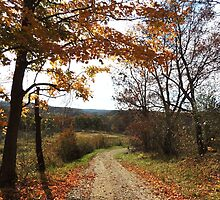 Redbubble Morgan County Lane by TrendleEllwood