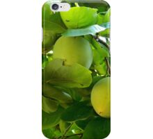 Fresh Fruit    ^ iPhone Case/Skin