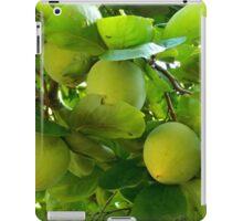 Fresh Fruit    ^ iPad Case/Skin