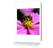 Pollen Count Greeting Card