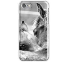 Horse love iPhone Case/Skin