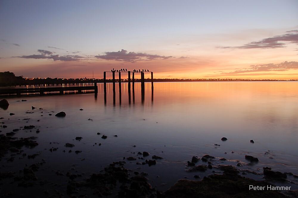 Sunrise at Beaumaris Bay by Peter Hammer