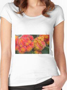 Orange & Yellow Moon Cactus Women's Fitted Scoop T-Shirt