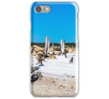 Salt Lake Fishtrap iPhone Case/Skin