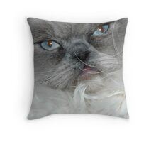 Diego Throw Pillow