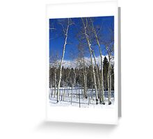 Dusted Aspens Greeting Card