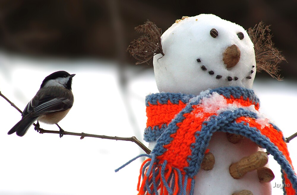Chickadee and the snowman by Jayne