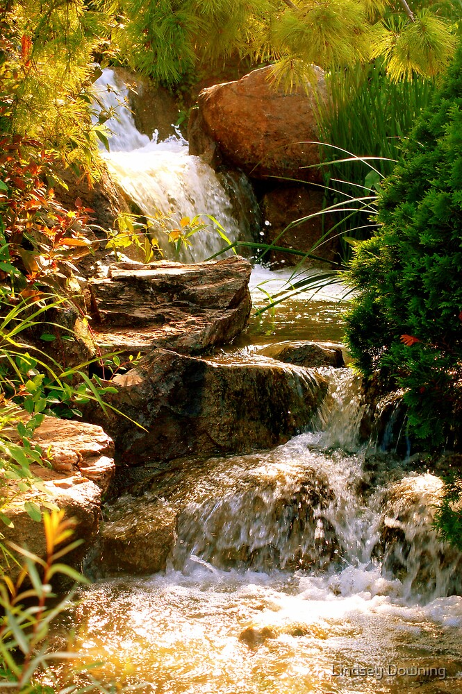 waterfall by Lindsey Downing