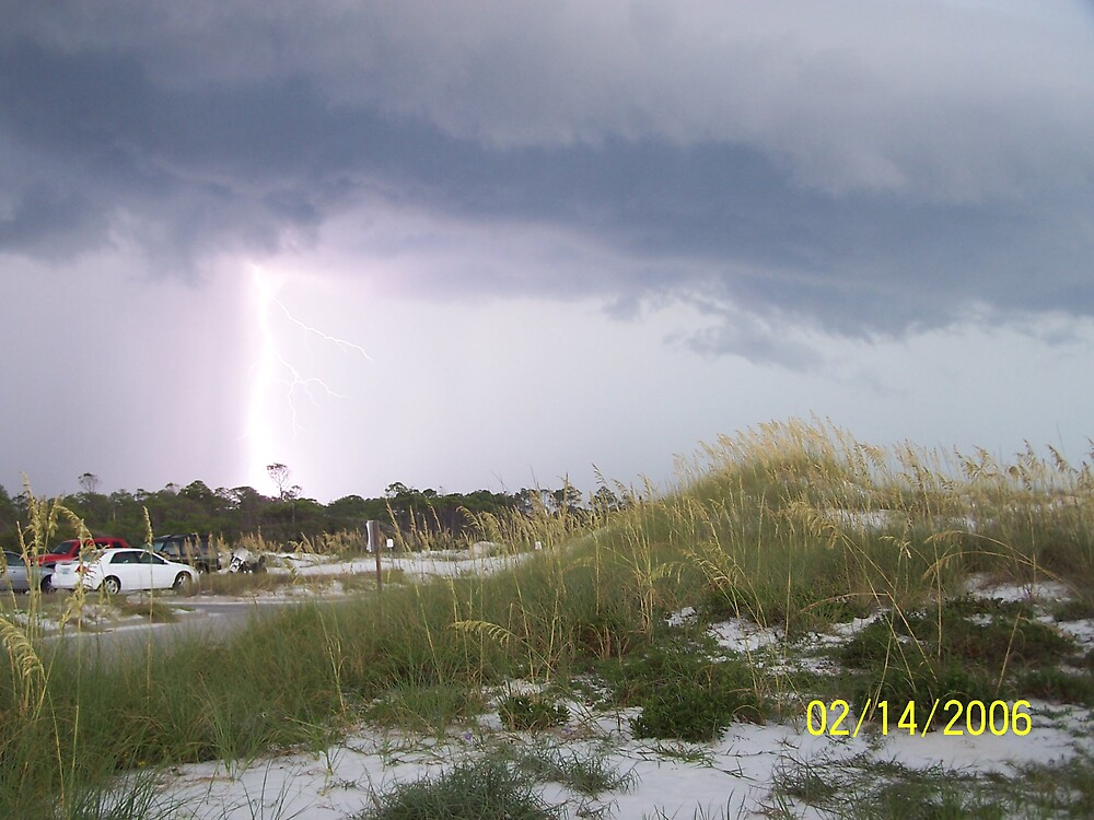 Lighting By Shell Island Fl. by chevylover