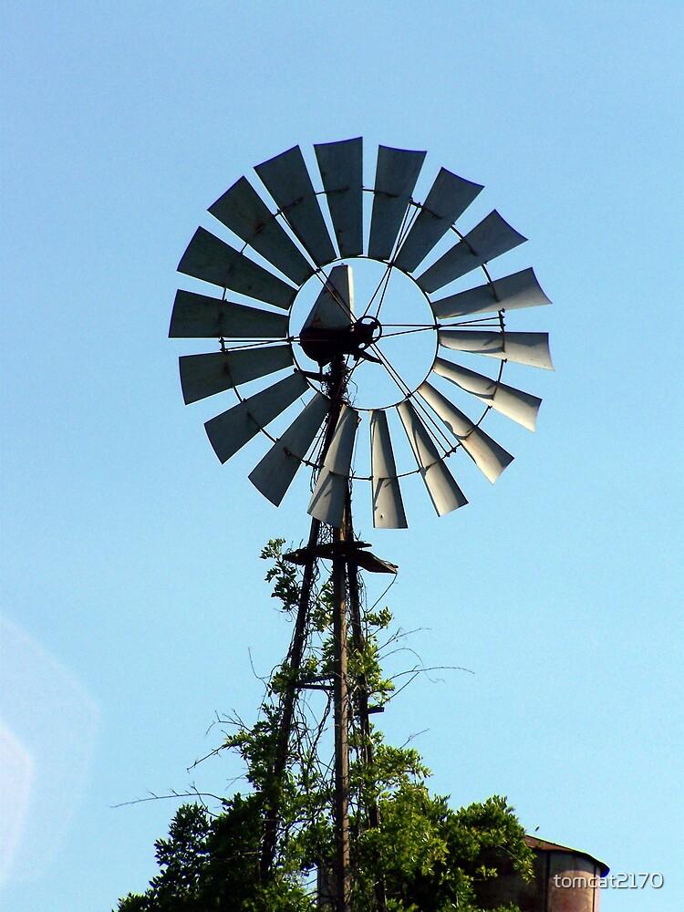 windmill by tomcat2170