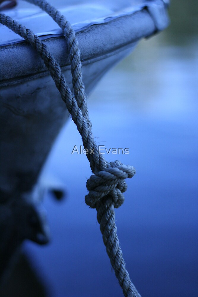 Blue Knot by Alex Evans