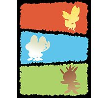 Kalos Starters Vertical Photographic Print