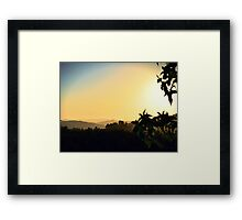 Sycamore Sunset ~ digital paint effect  Framed Print