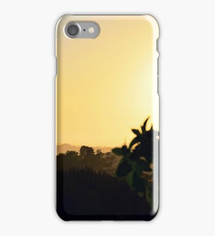 Sycamore Sunset ~ digital paint effect  iPhone Case/Skin