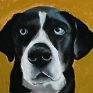 Seamus - a dog by ria hills