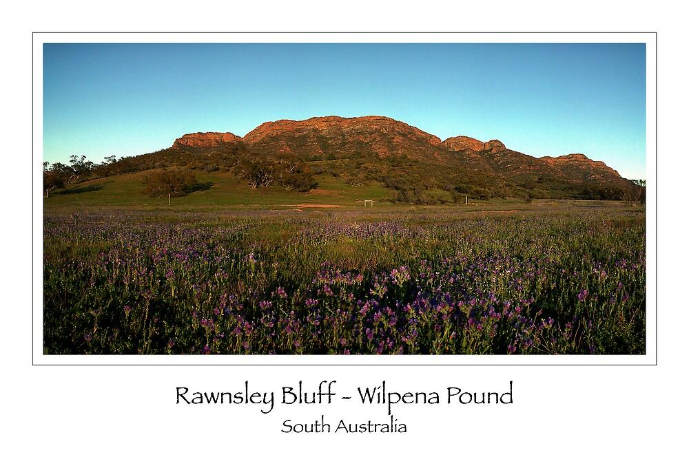 Rawnsley Bluff - Wilpena Pound (card) by Ashley van Raaphorst