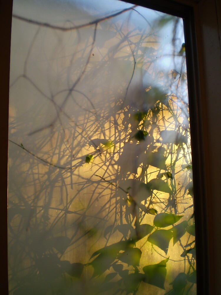 Sunrise and a Frosted Window by Hippo