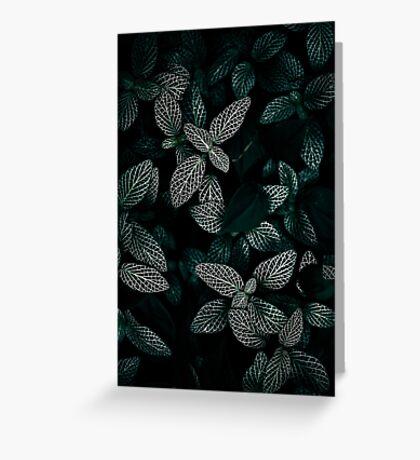 Dark Leaves 3 Greeting Card