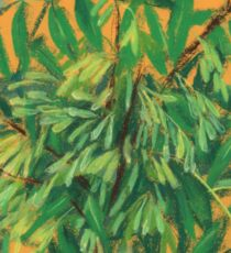 """Ash-tree"", green & yellow, floral art Sticker"