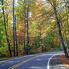 Country Road by ahbdigital