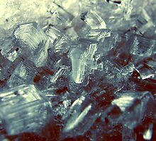ICE by vladimirs