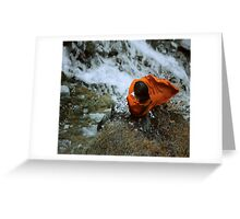 above the waterfall Greeting Card