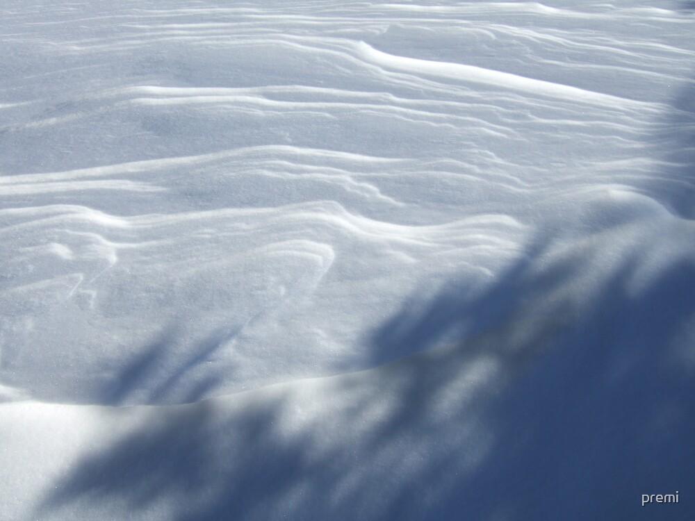 Windblown Snow by premi