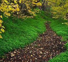 Autumn path by farmboy