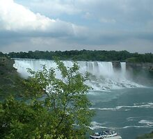 In The Life of The Niagra Falls by Dori920