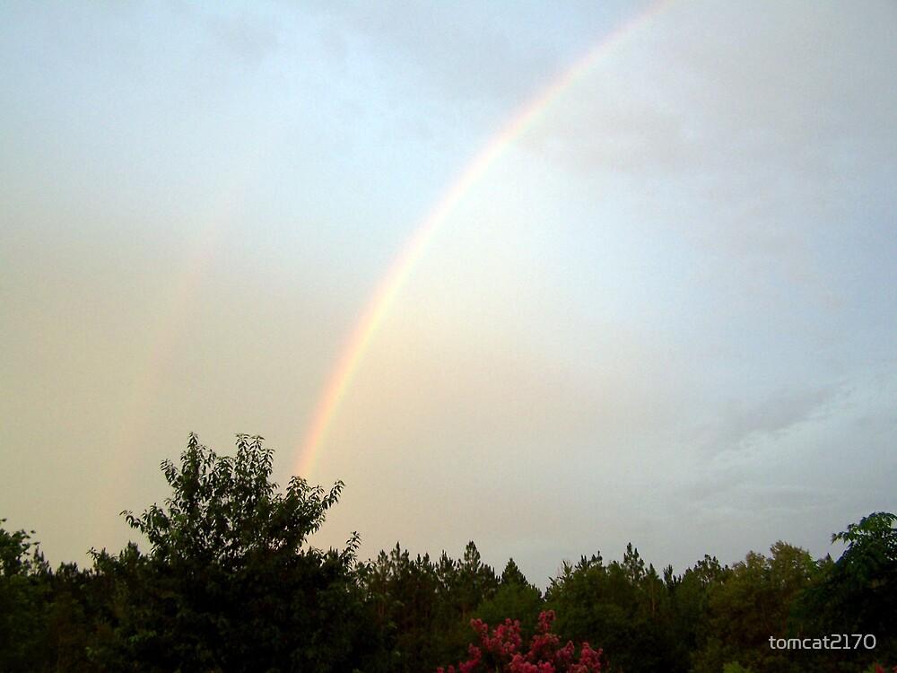 taste the rainbow by tomcat2170