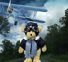 COME FLY WITH ME>BEAR PLANE PICTURE>CARD>PILLOW>TOTE BAG by ✿✿ Bonita ✿✿ ђєℓℓσ