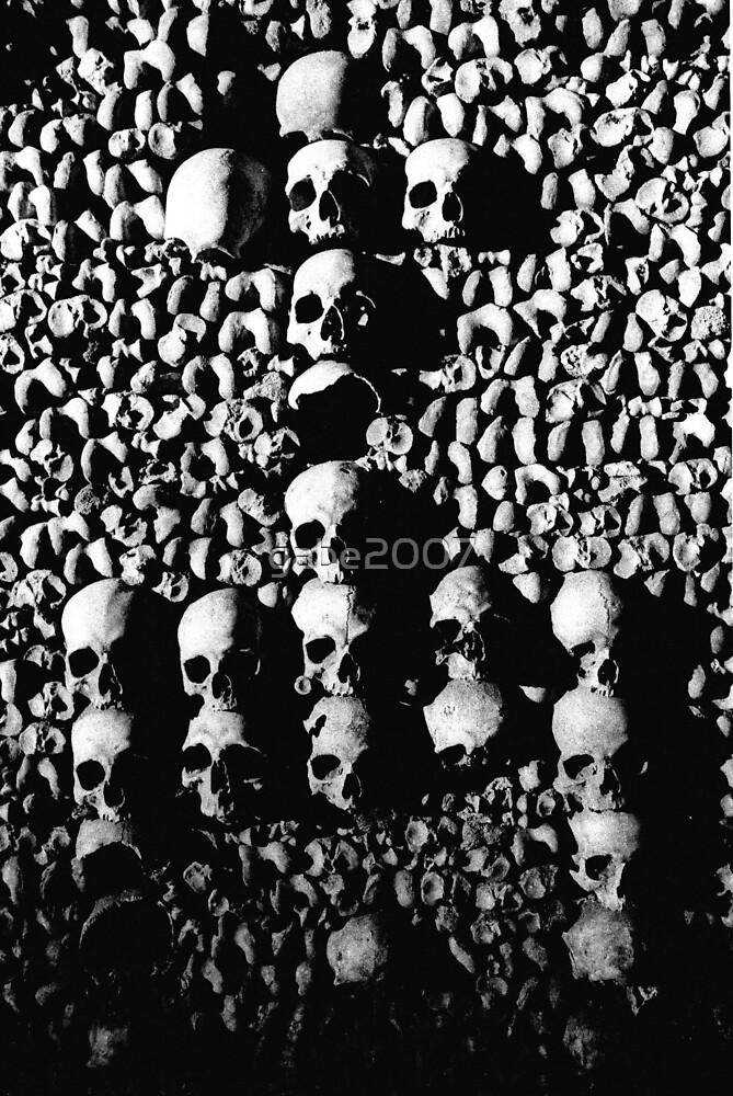 catacombs skulls,paris by gabe2007