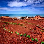 """""""True Colours of Broome"""", Western Australia by Chris  Arts"""