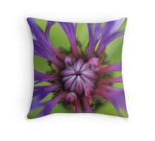 Perennial Cornflower Throw Pillow