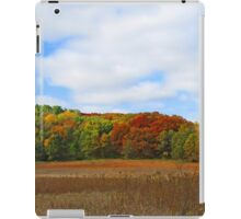Beautiful Autumn Landscape Trees and Field iPad Case/Skin