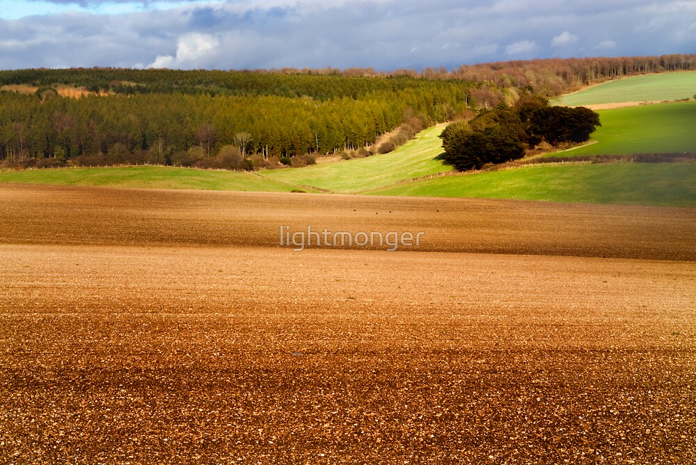 Landscape QEF by lightmonger